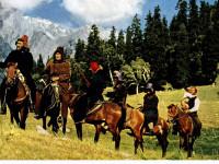Түркия қазақтарының еркіндік жолындағы ұлы көші