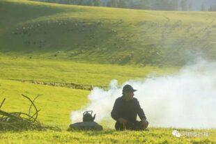 Алтайдың Торғайты жайлауы (фотобаян)